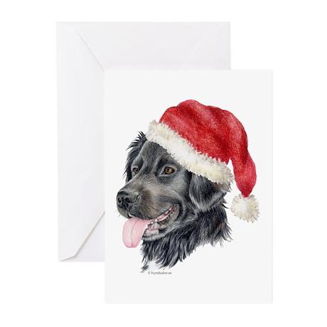 Christmas Stabyhoun Greeting Cards (Pk of 10)