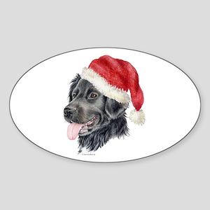 Christmas Stabyhoun Oval Sticker
