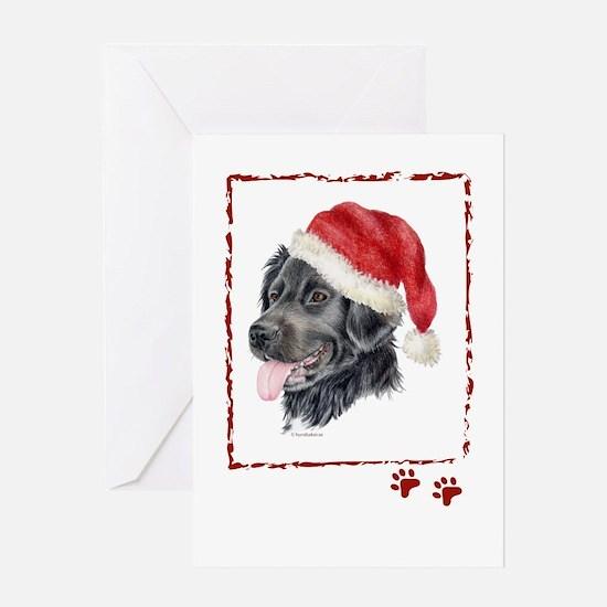 Christmas Stabyhoun Greeting Card