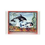 Pickpocketing Whales Rectangle Magnet (10 pack)