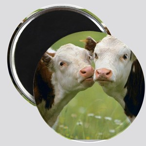 Kissing Cows Magnets