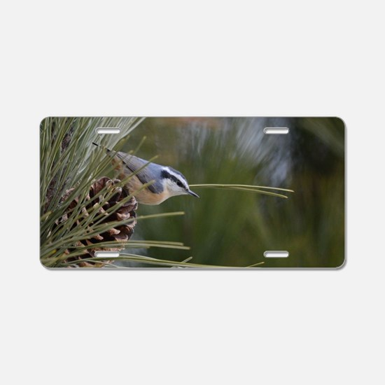 Red Breasted Nuthatch Aluminum License Plate