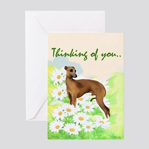 Italian Greyhound portrait Greeting Card