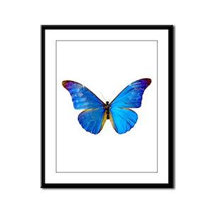 Blue Butterfly Framed Panel Print