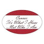 Cancer Not Who I Am Oval Sticker (10 pk)