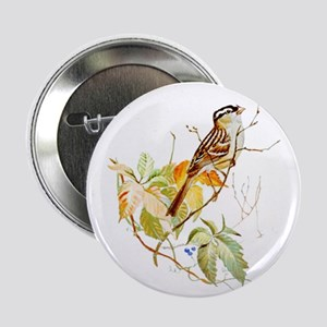 "White Crowned Sparrow 2.25"" Button"