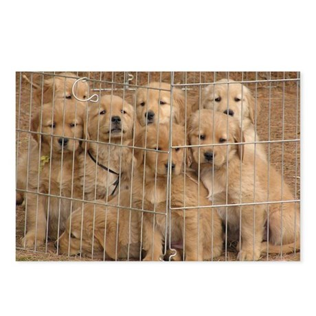 Puppy Prison Gang Postcards (Package of 8)