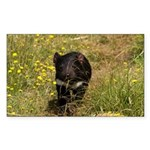 Tasmanian Devil Rectangle Sticker 50 pk)