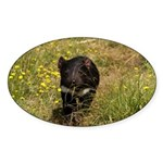 Tasmanian Devil Oval Sticker (10 pk)