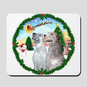 Take Off1/Irish Wolfhound pair Mousepad