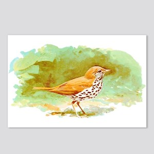 Wood Thrush Postcards (Package of 8)