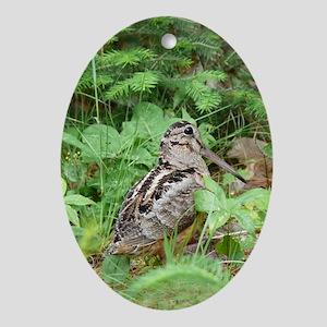 Female Woodcock Oval Ornament