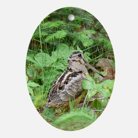 Female Woodcock Oval Ornament