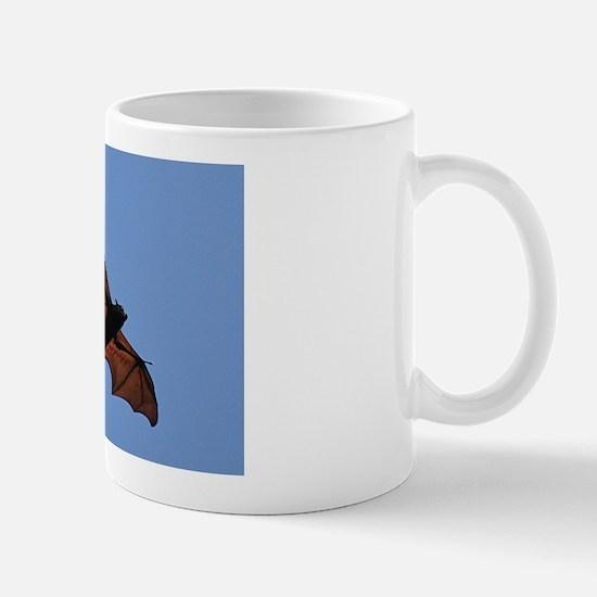 Flying fox fruit bat