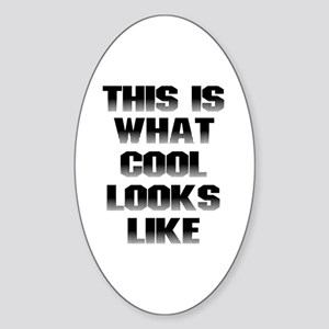 This is What Cool Looks Like Oval Sticker