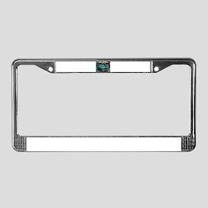 710 License Plate Frame