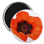 "Red Poppies 2.25"" Magnet (10 pack)"