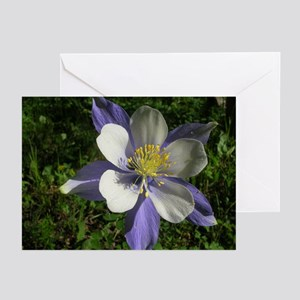 Columbine Greeting Cards