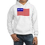 July 4 1776 Hooded Sweatshirt