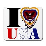USA I LOVE USA Mousepad
