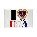 USA I LOVE USA Magnets