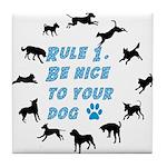 Rule One Tile Coaster