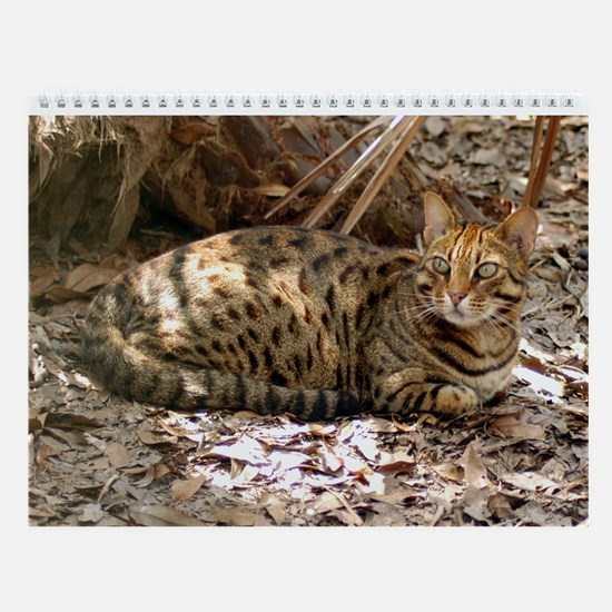 Bengal Cat Wall Calendar