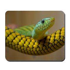 Green Mamba Snake Mousepad