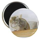 Perched Cat Magnet