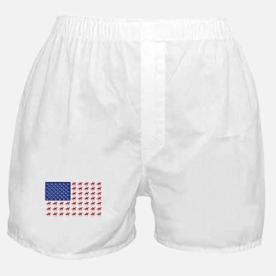 Original Patriotic Horse Flag Boxer Shorts