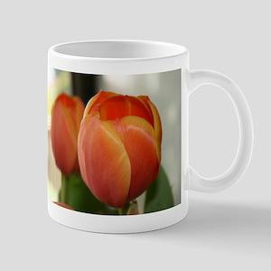 Tulips for you Mug