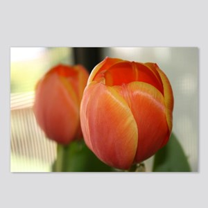 Tulips for you Postcards (Package of 8)