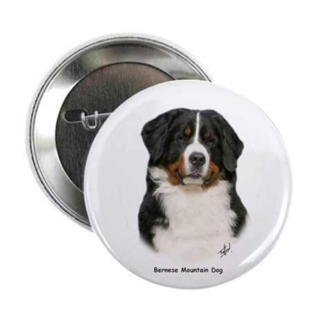 "Bernese Mountain Dog 9Y348D-094 2.25"" Button"