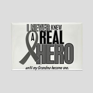 Never Knew A Hero 2 Grey (Grandma) Rectangle Magne