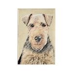 Welsh Terrier Rectangle Magnet (10 pack)
