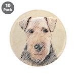 Welsh Terrier 3.5