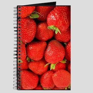 Red Strawberry Blank Recipe Book