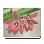 Pink Tulips In Bloom Mousepad