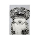 TIbetan Terrier Rectangle Magnet
