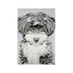 TIbetan Terrier Rectangle Magnet (10 pack)