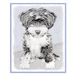 TIbetan Terrier Small Poster