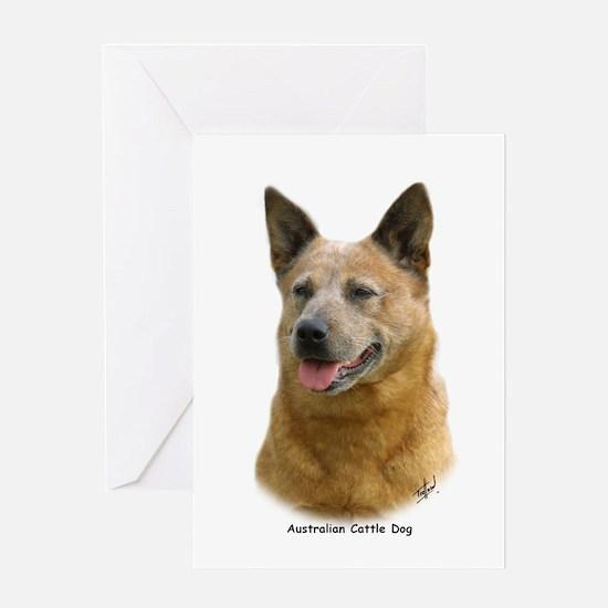 Aust Cattle Dog 9K009D-19 Greeting Card