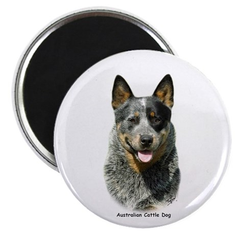"""Australian Cattle Dog 9F061D-03 2.25"""" Magnet (10 p"""