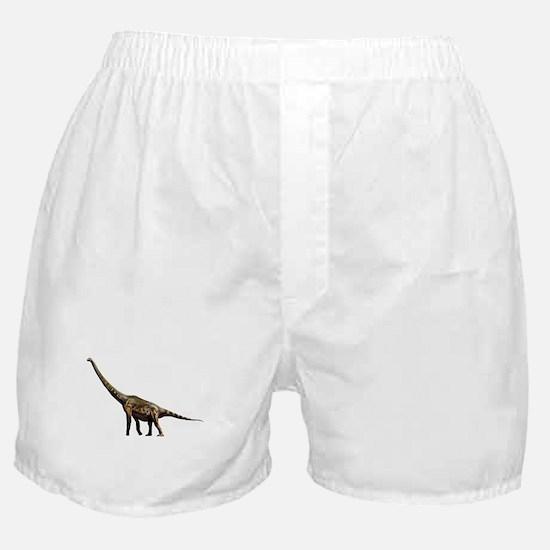 Brachiosaurus Jurassic Dinosaur Boxer Shorts