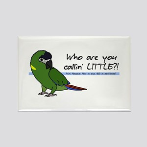 Little Yellow Collared Macaw Rectangle Magnet