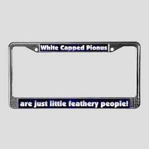 Fthry Ppl White Capped Pionus License Plate Frame