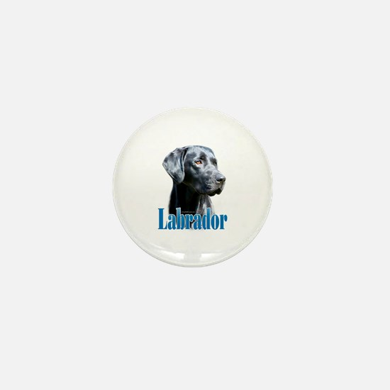 Lab(black) Name Mini Button