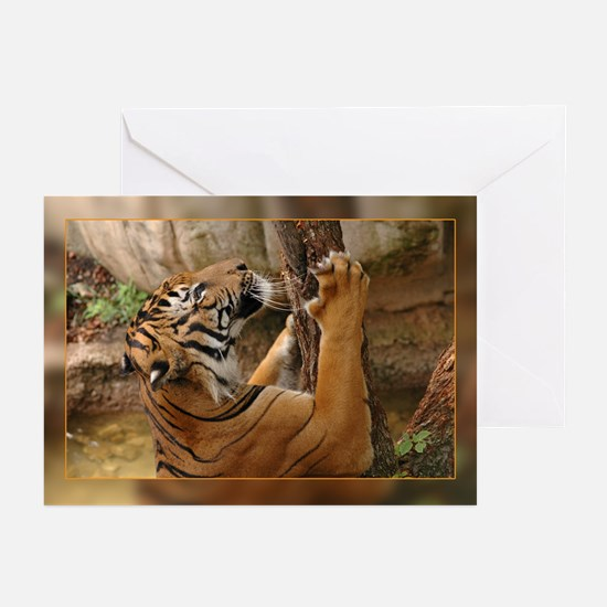 Indochinese Tiger -  Greeting Cards (Pk of 10)