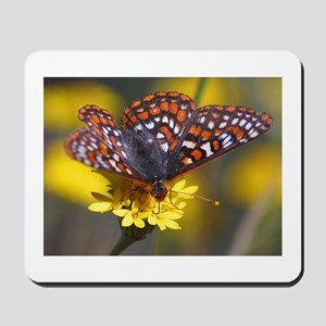 Butterfly on Yellow Flower Mousepad