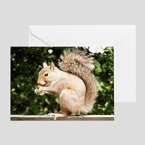 Squirrel Smiling Greeting Card